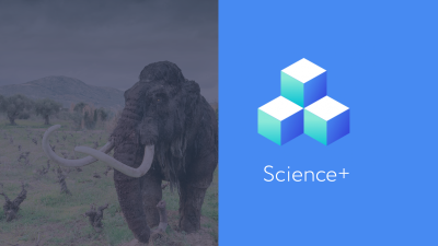 Science+ Mammoths Workshop